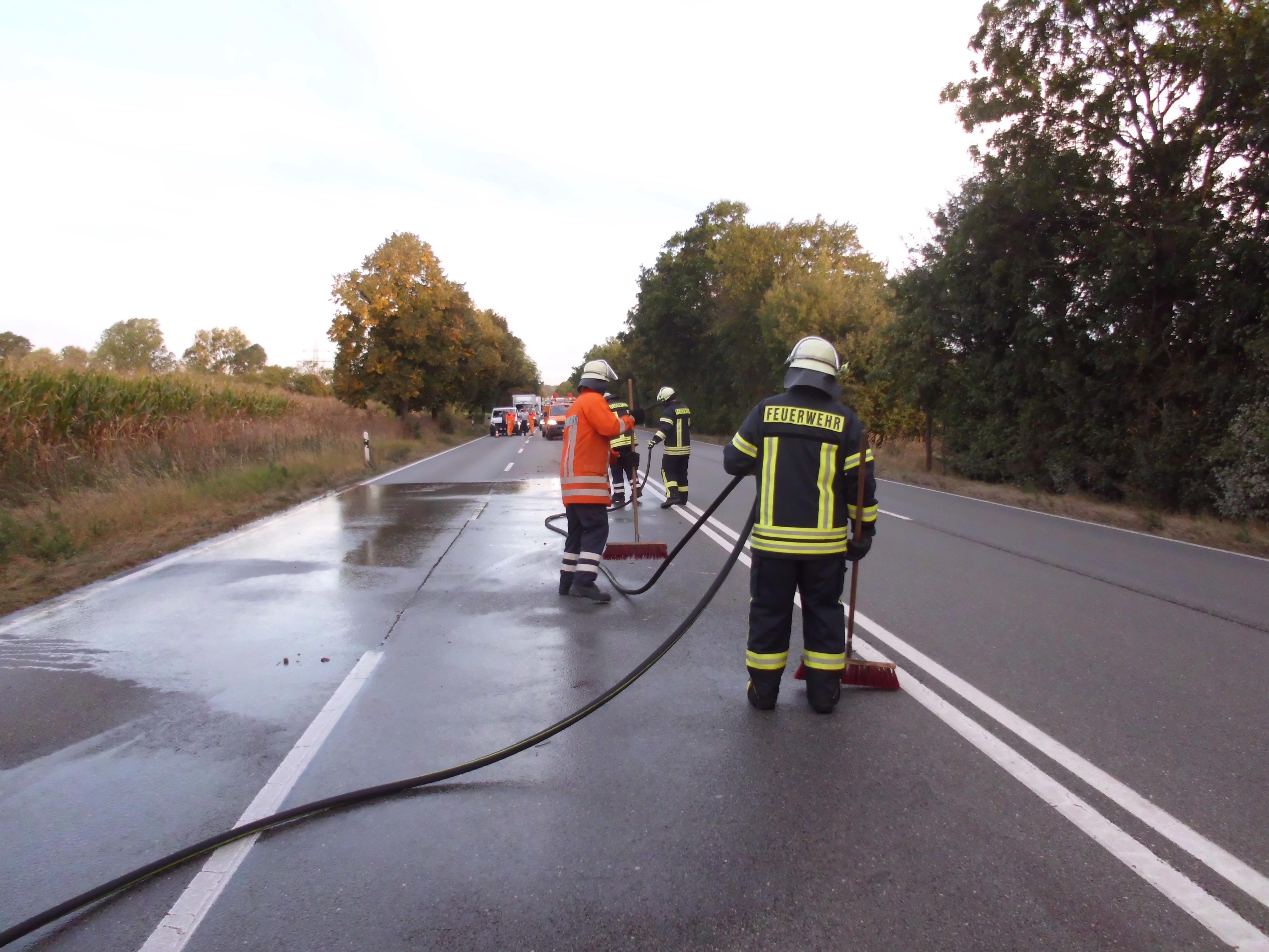 Fahrbahnreinigung nach Wildunfall auf der B83